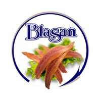 CONSERVAS BLASAN